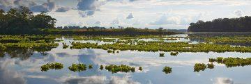 Reserva Nacional Pacaya Samira