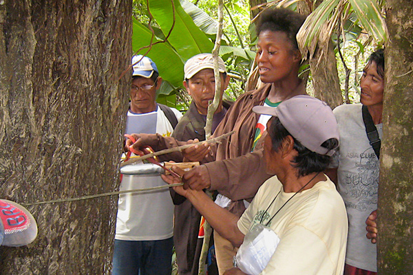 The late Dr. Kye Epps teaches Wapichana field researchers how to measure tree diameter, information that can then be used to calculate a tree's biomass and carbon storage.