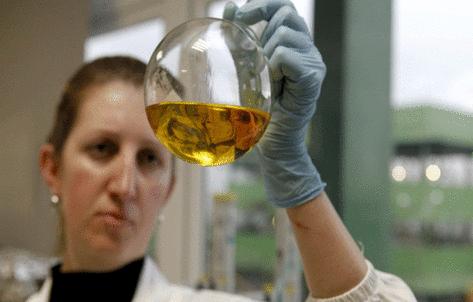 Pesquisadora da Universidade Federal de Tocantins Realizando pesquisas com etanol a partir da batata- doce