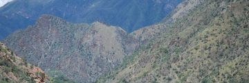 0421_Middle-Maranon-valley-David-Hill.5