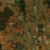 Imagem destacada mapa de desmatamento da Universidade de Maryland