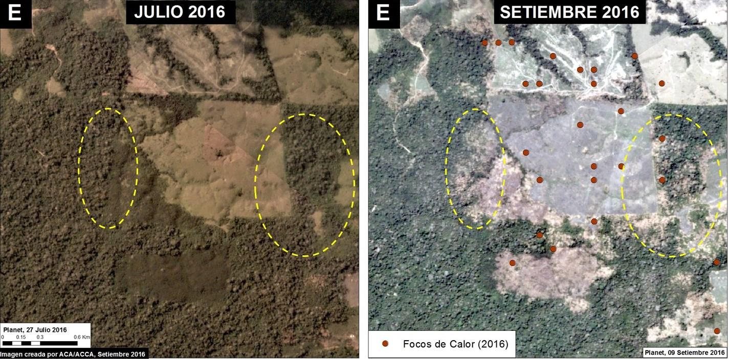 Deforestación en otras zonas de Madre de Dios. Fuentes: Planet, INPE, MAAP.