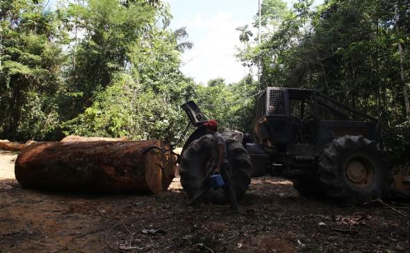 Amazonia-June-21-MR4A2821-e1383948334398