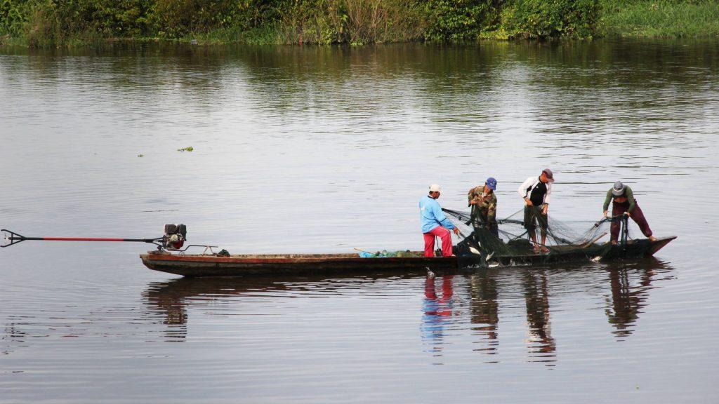 Informe revela que peces de laguna moronacocha no son for Cria de peces para consumo humano