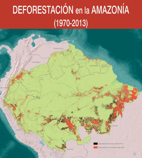 Raisg O Desmatamento Na Amazônia Desde 1970 Até 2013